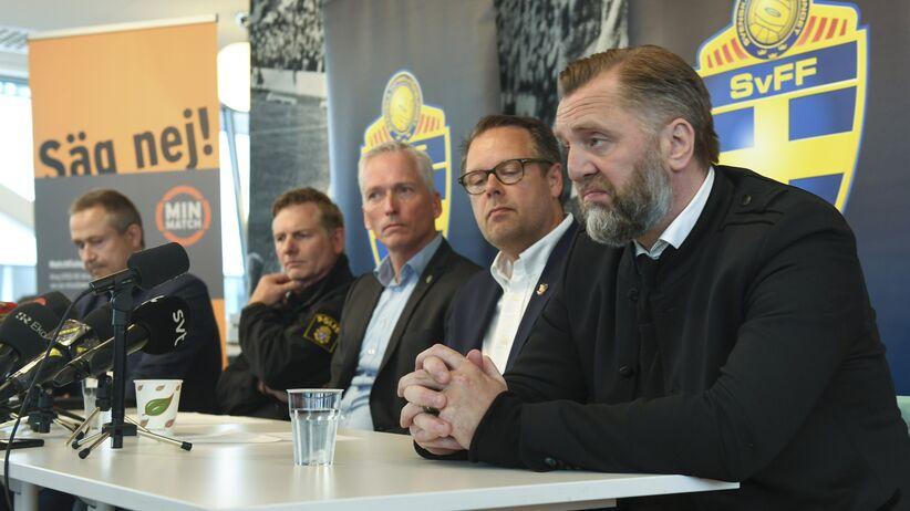Liga szwedzka