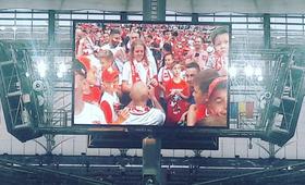Polska - Rumunia: Kibic biało-czerwonych oświadczył się przed meczem!