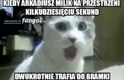 Memy (5)