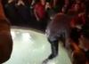 Prezes Romy wskoczył do fontanny