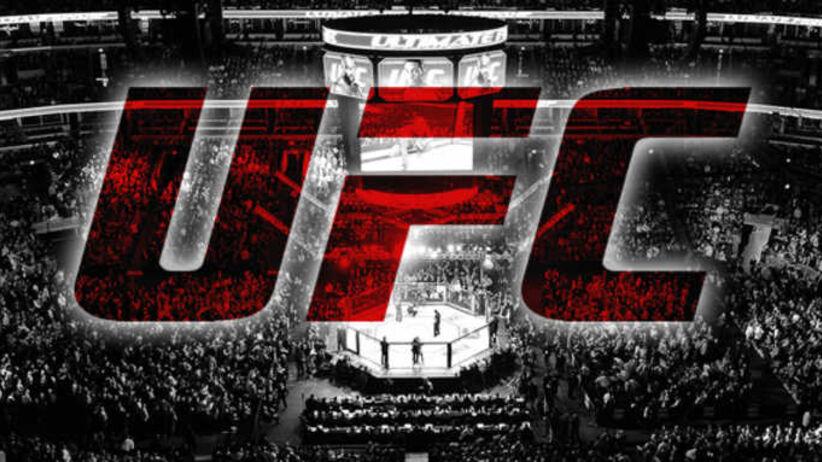 UFC w polskiej telewizji za darmo. Gdzie oglądać na żywo?